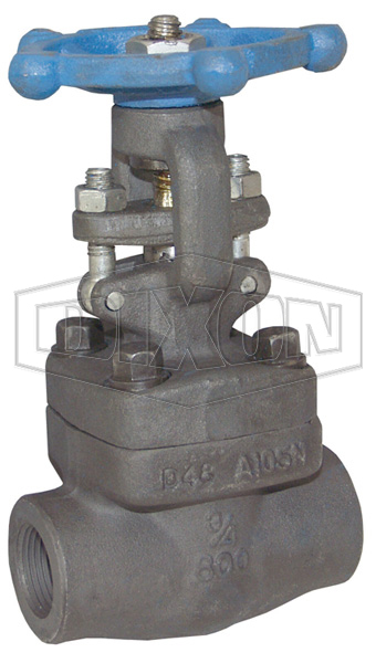 Class 800 Forged Steel Gate Valve