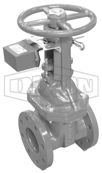 Monitored OS&Y Flanged Gate Valve