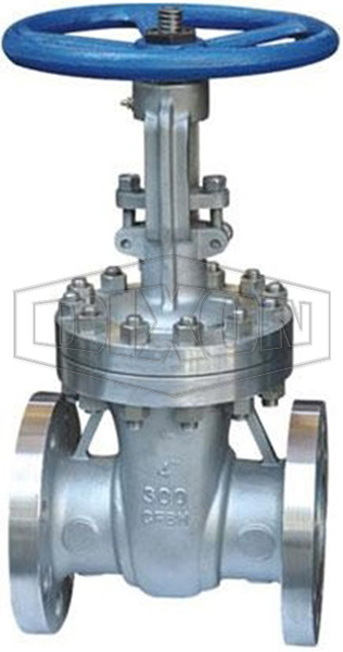 Flanged OS&Y Stainless Steel Gate Valve